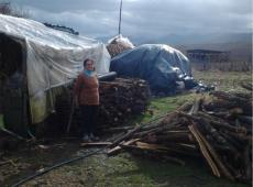 Boj proti hladu - Albánsko - Drevo pre chudobných - 2017